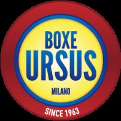 BOXE URSUS